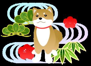 dog_7_1_2[1]